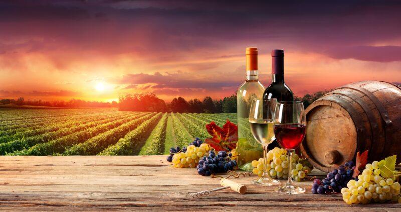 Wein Reben Komprimiert